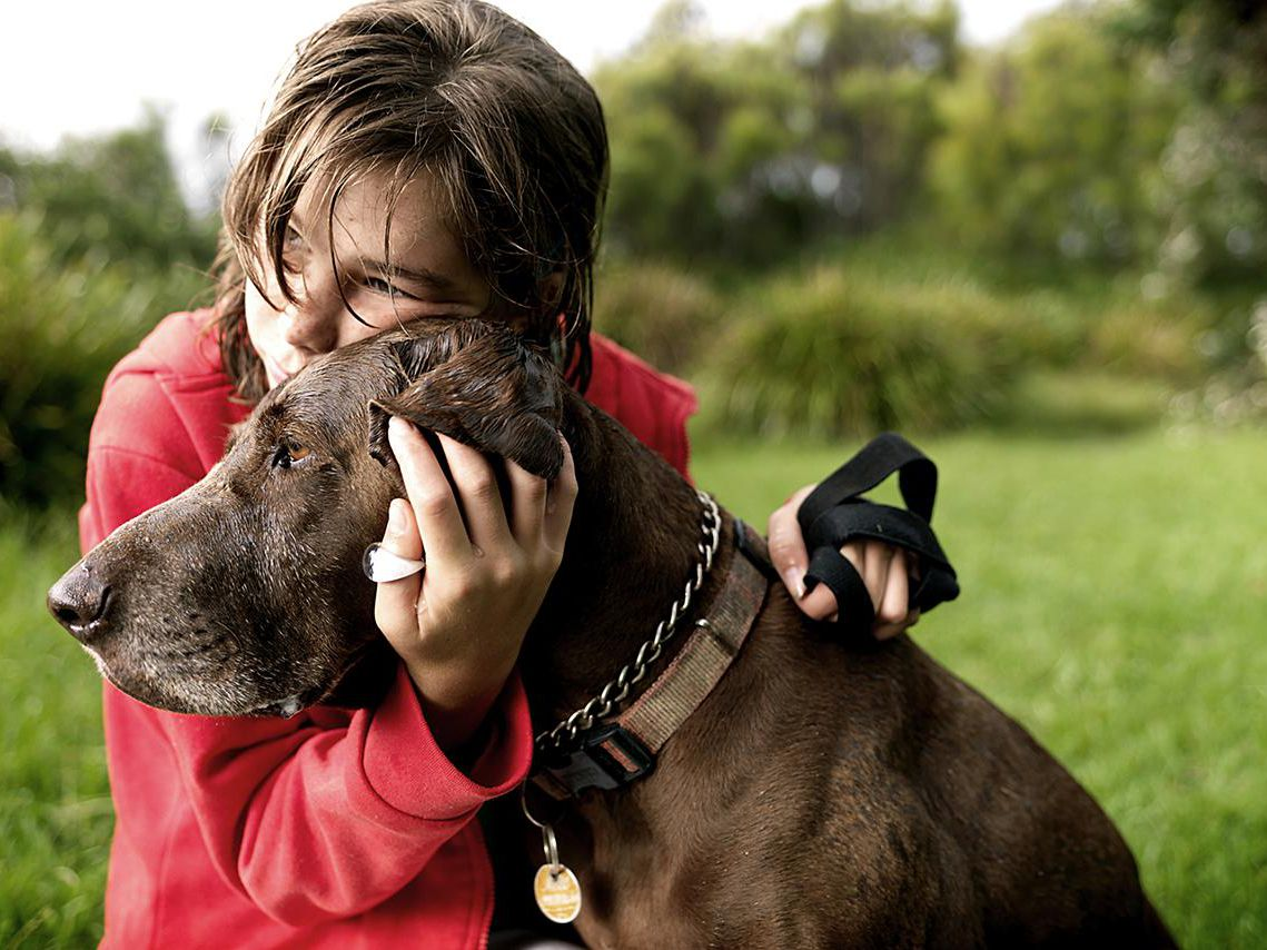 What to Do If Your Dog Has a Seizure