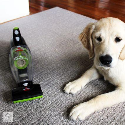 Bissell Pet Hair Eraser Cordless Vacuum