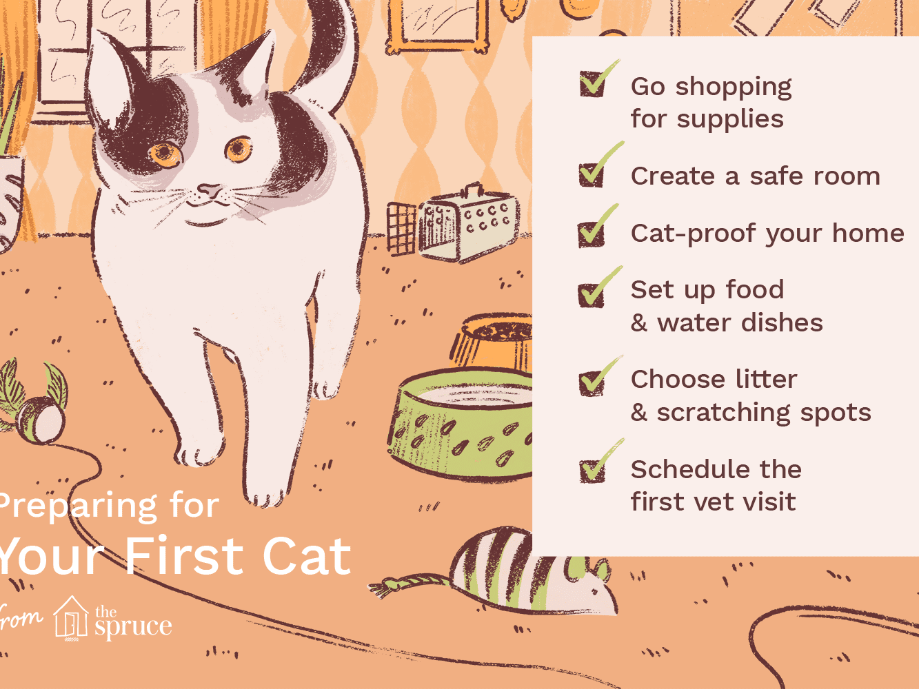 What To Know About Raising Your First Cat