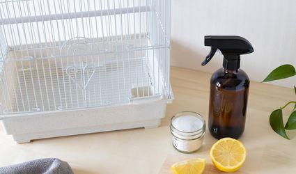 White metal birdcage next to brown spray bottle, sliced lemons and baking soda