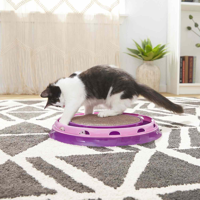 Frisco Scratch & Roll Scratcher Cat Toy with Catnip
