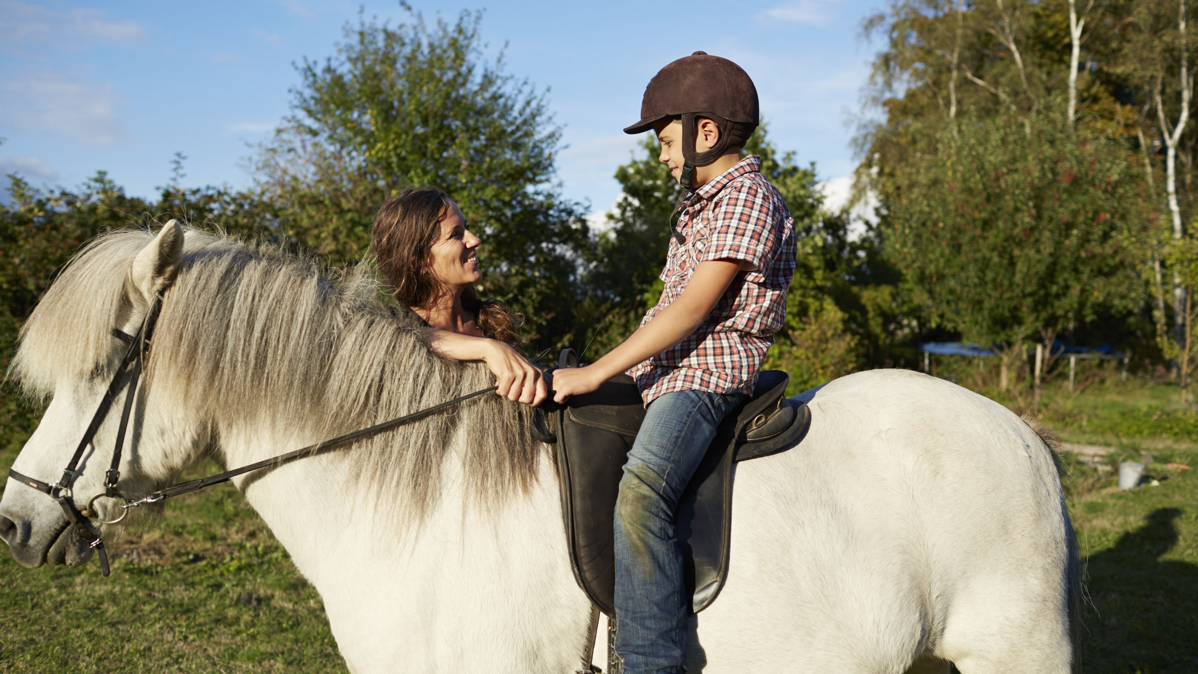 Phrases You Ll Hear During A Riding Lesson