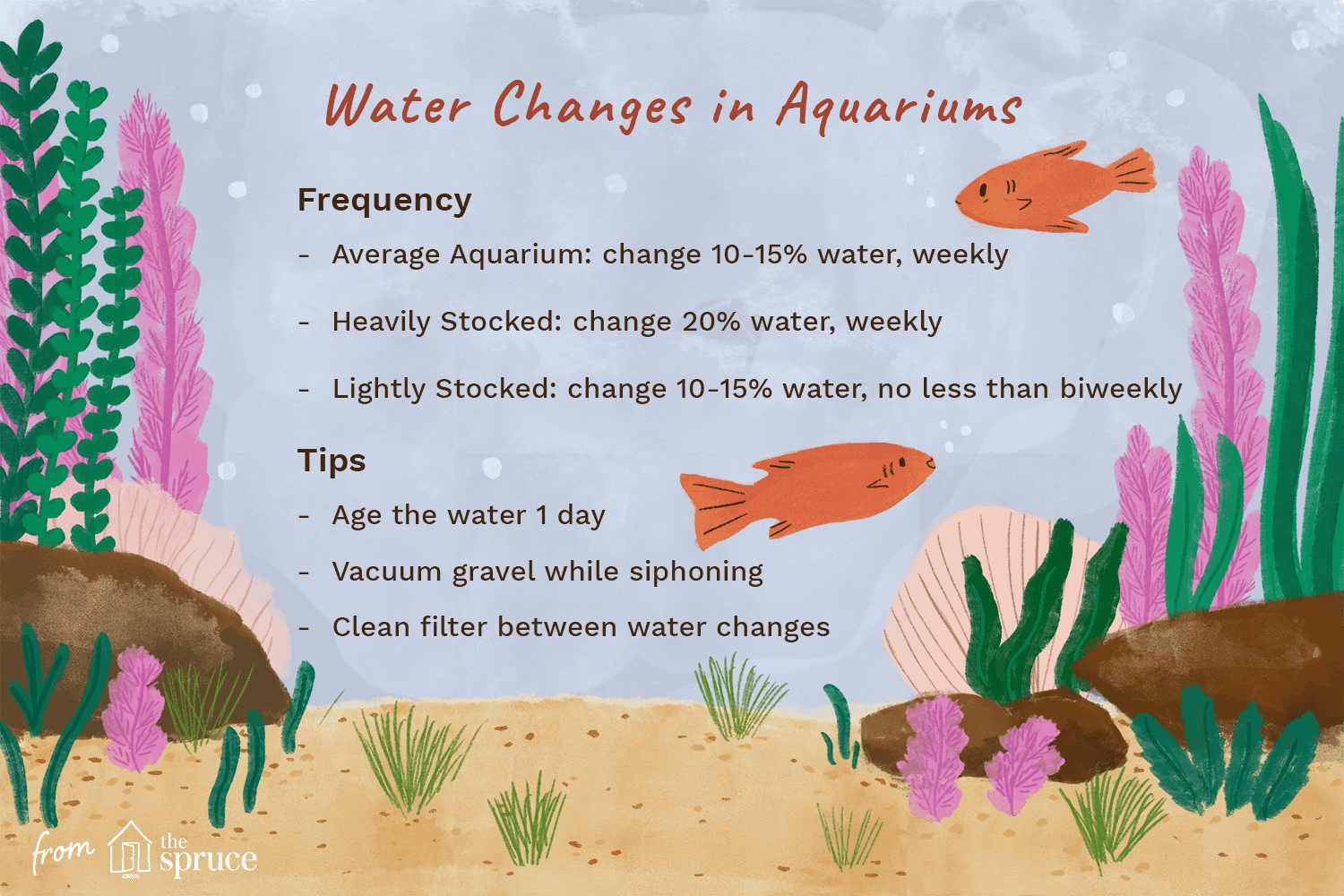 illustration of water changes in aquariums