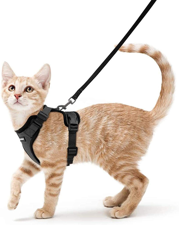 Rabbitgoo Adjustable Cat Harness and Leash Set