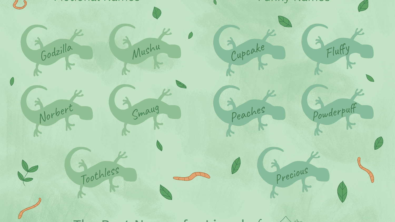 Top 22 Names for Pet Lizards