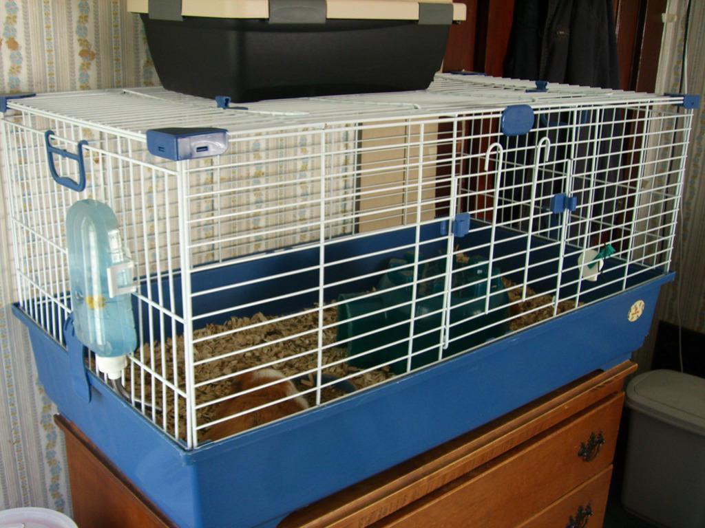 Seven Commercial Guinea Pig Cages