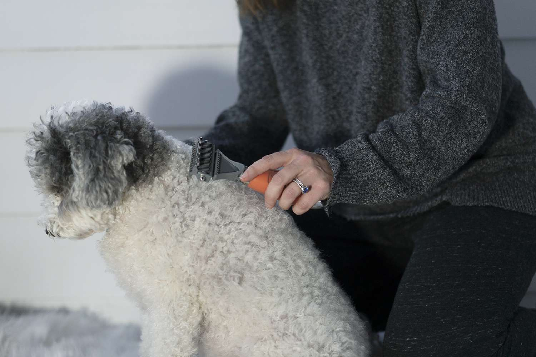 GoPets Dematting Comb