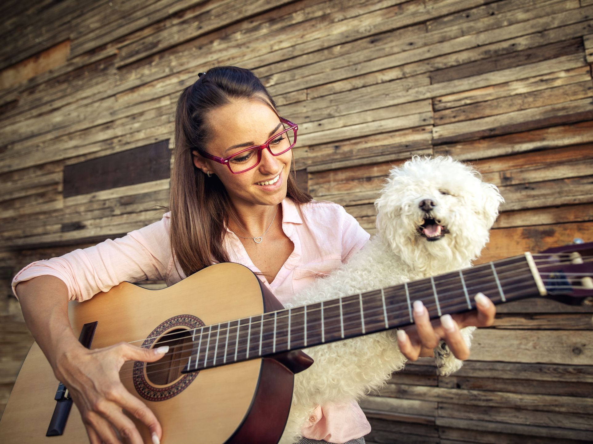 What to Know About Music Therapy for Your Puppy