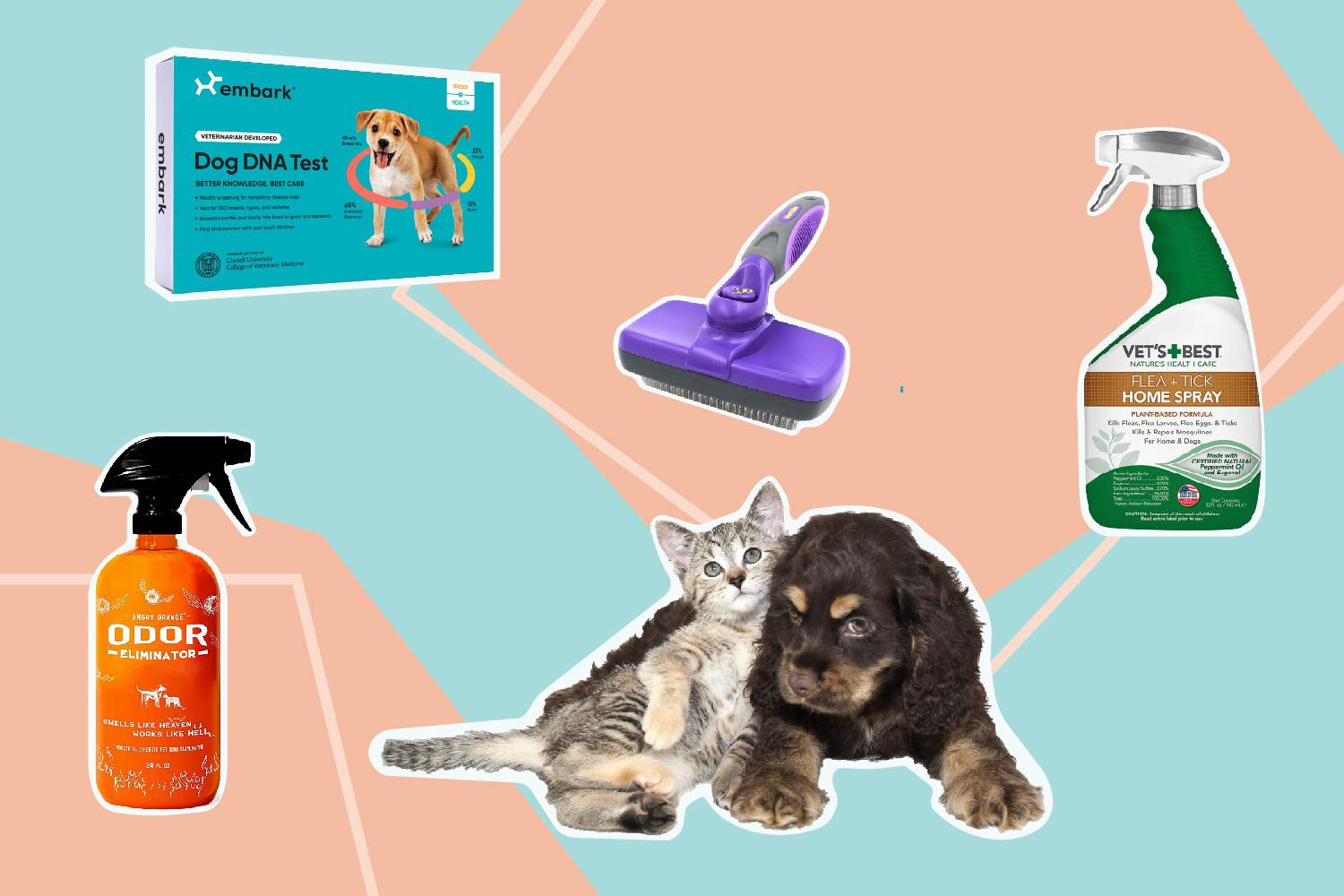 The Best Amazon Prime Day Pet Deals of 2021 for Day One of the Sale