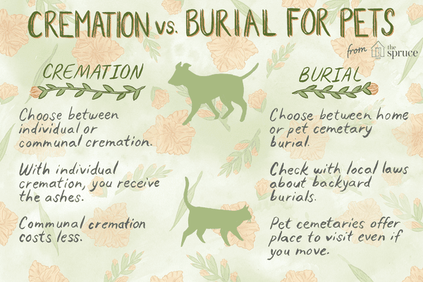 Options for pet care after death: cremation vs. burial