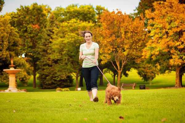Young woman walking with pet puppy poodle