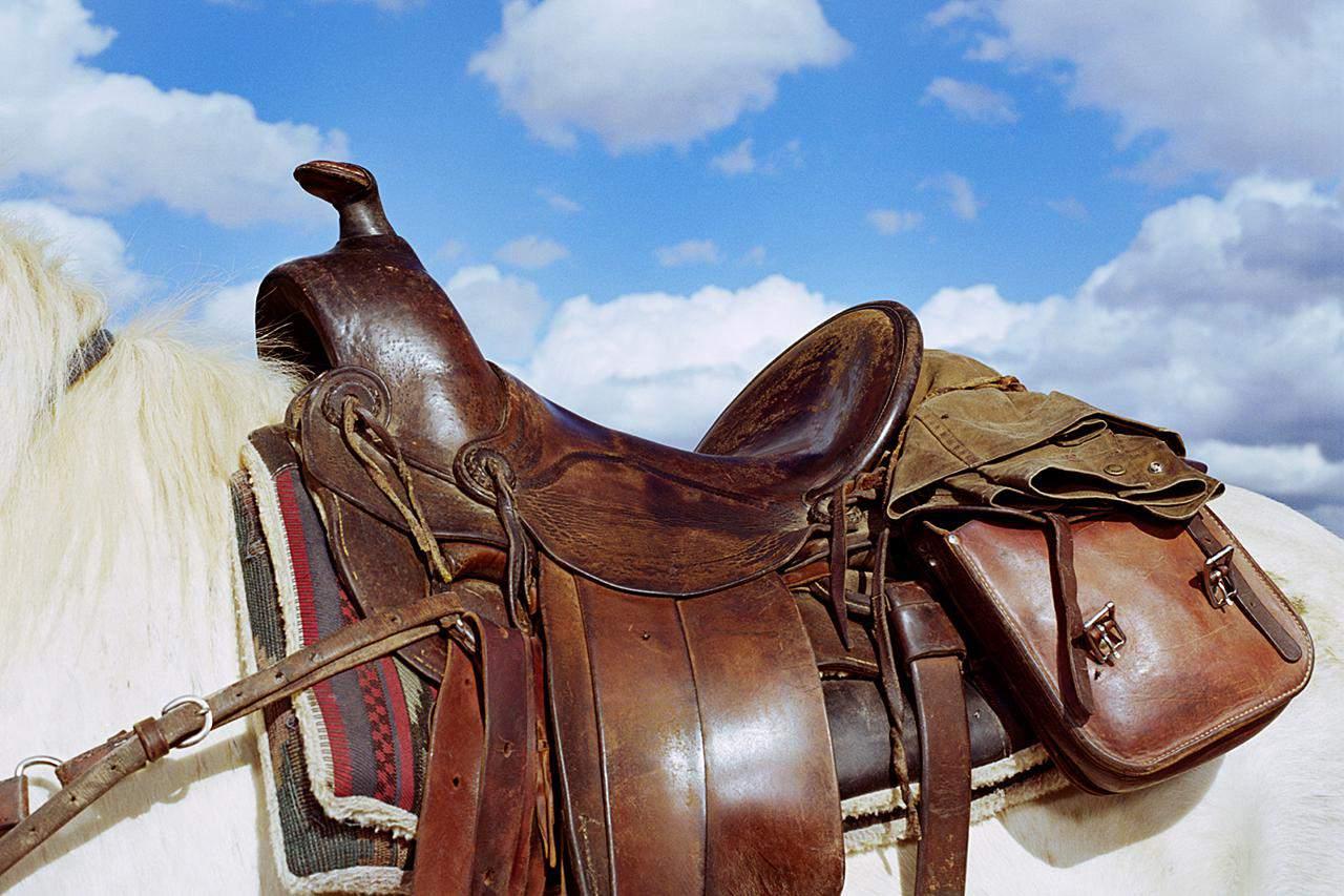 A western saddle.