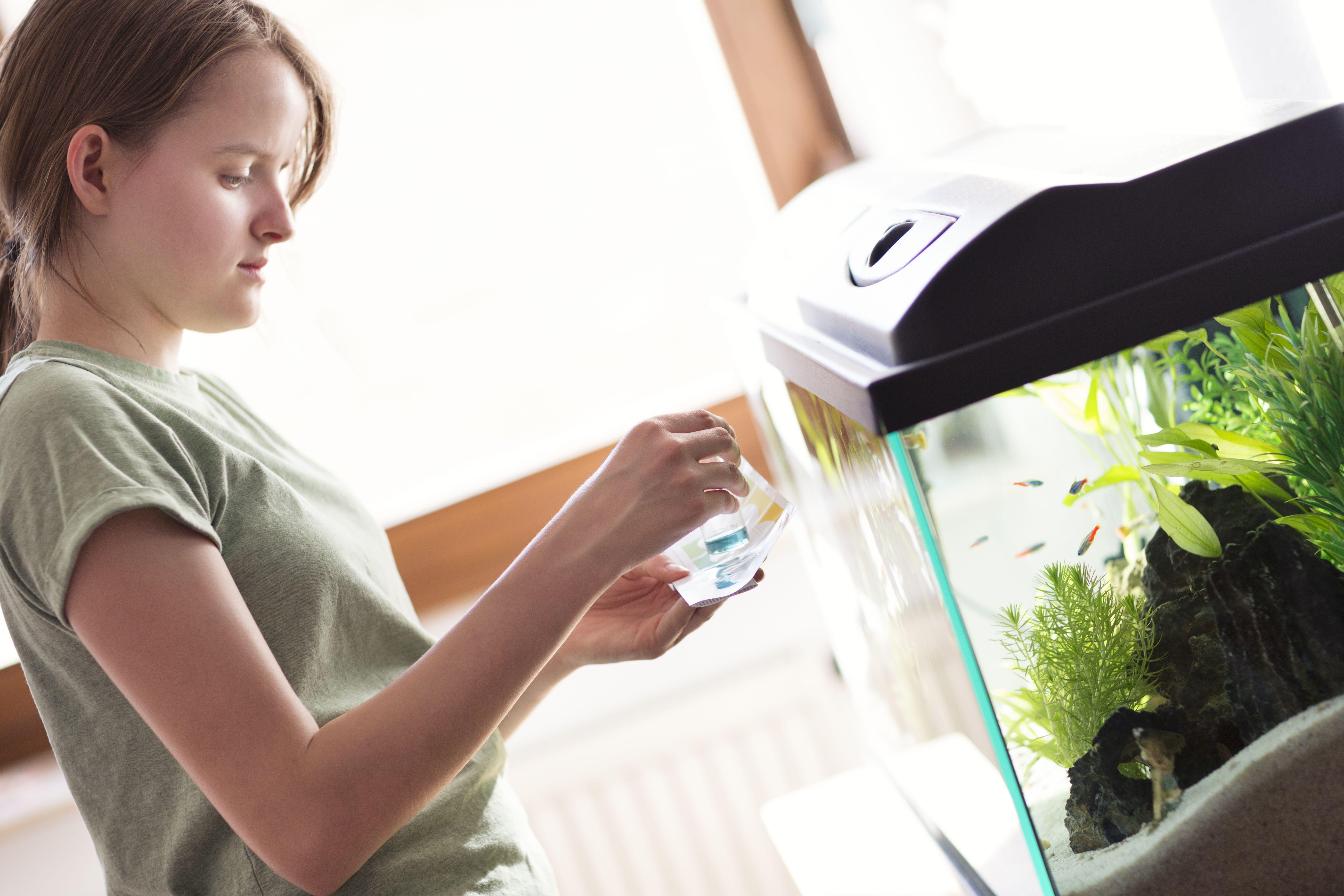 Teenage girl testing the water of a home aquarium