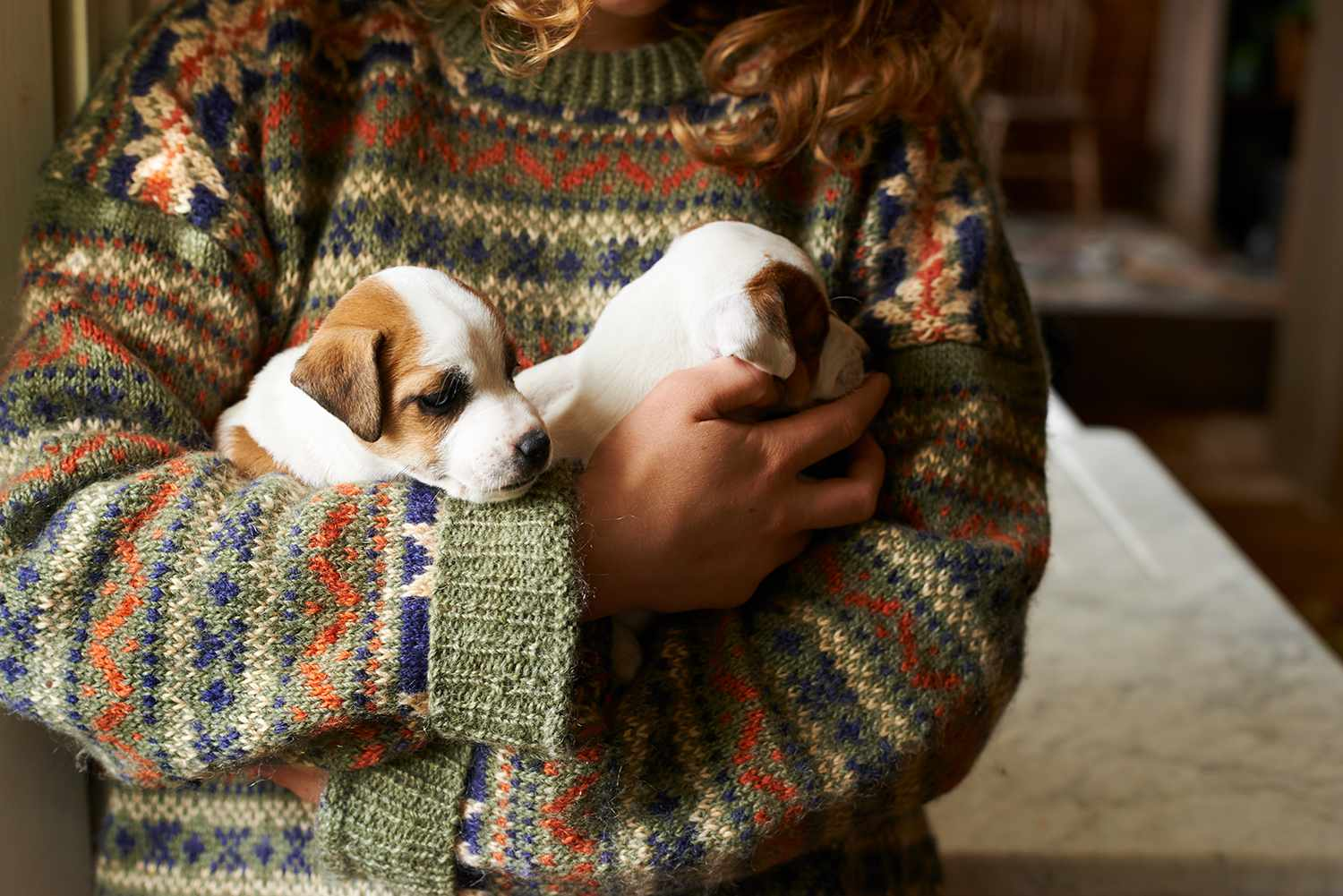 Girl in sweater holding puppies