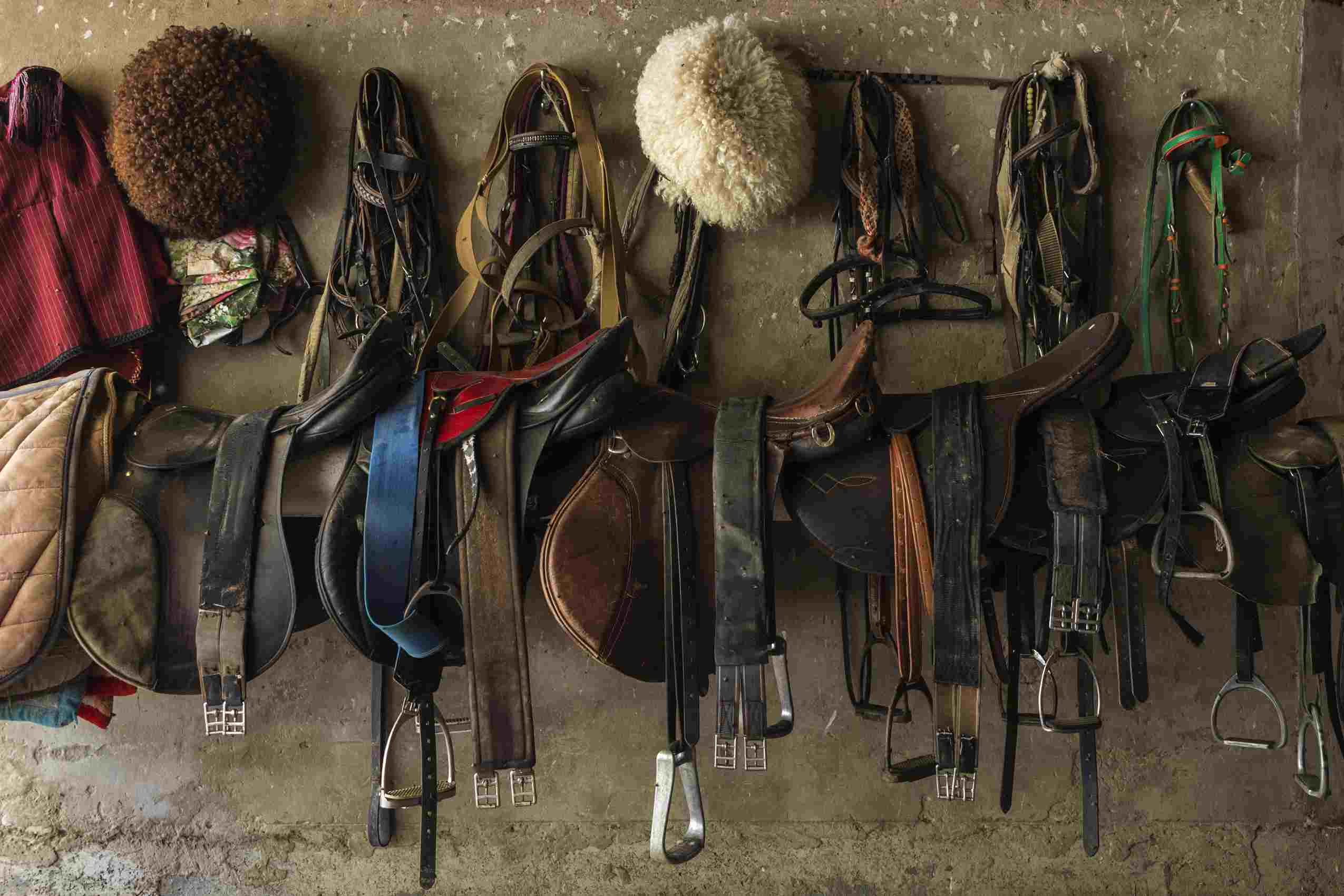 Equestrian gear hanging up on a wall.