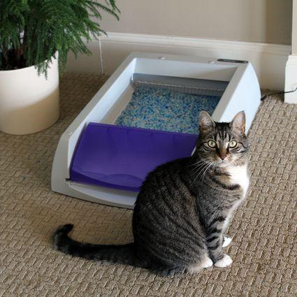 PetSafe ScoopFree Ultra Self-Cleaning Cat Litter Box