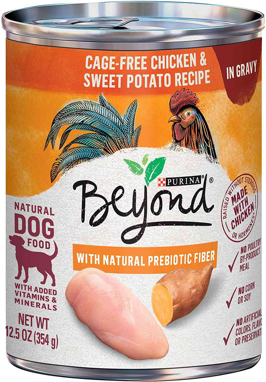 Purina Beyond Chicken & Sweet Potato Recipe Grain-Free Adult Wet Dog Food
