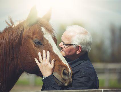 Human-horse bond