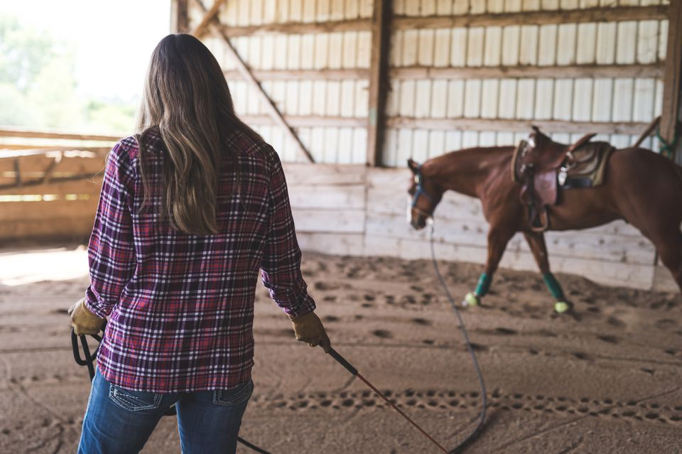 Woman training horse