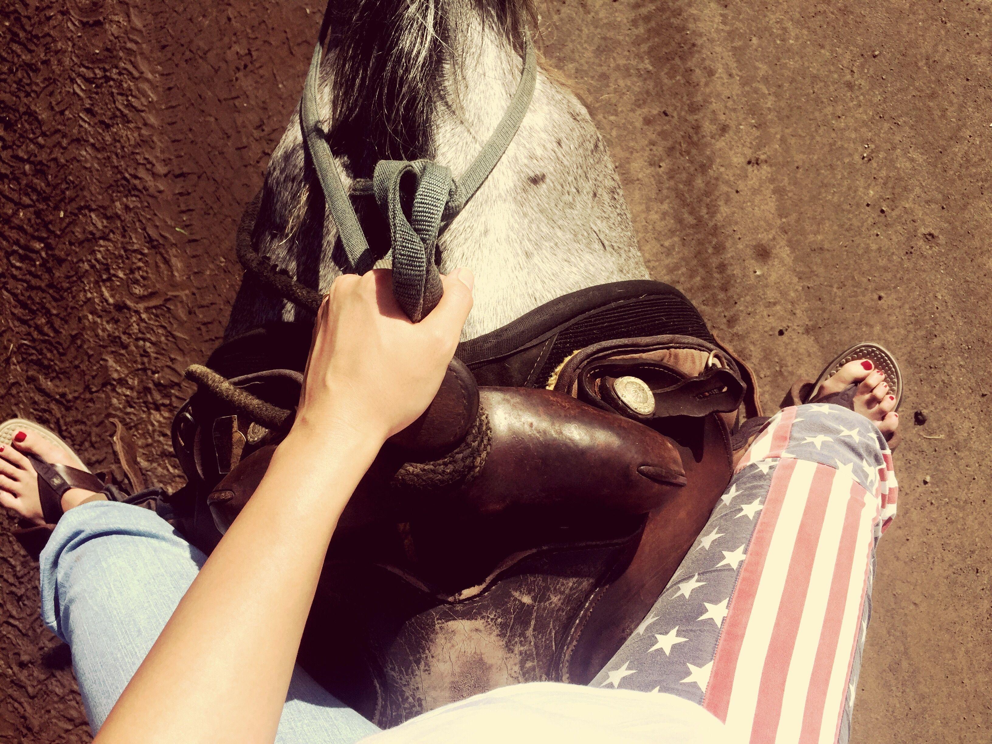 Bajo la sección de una mujer a caballo