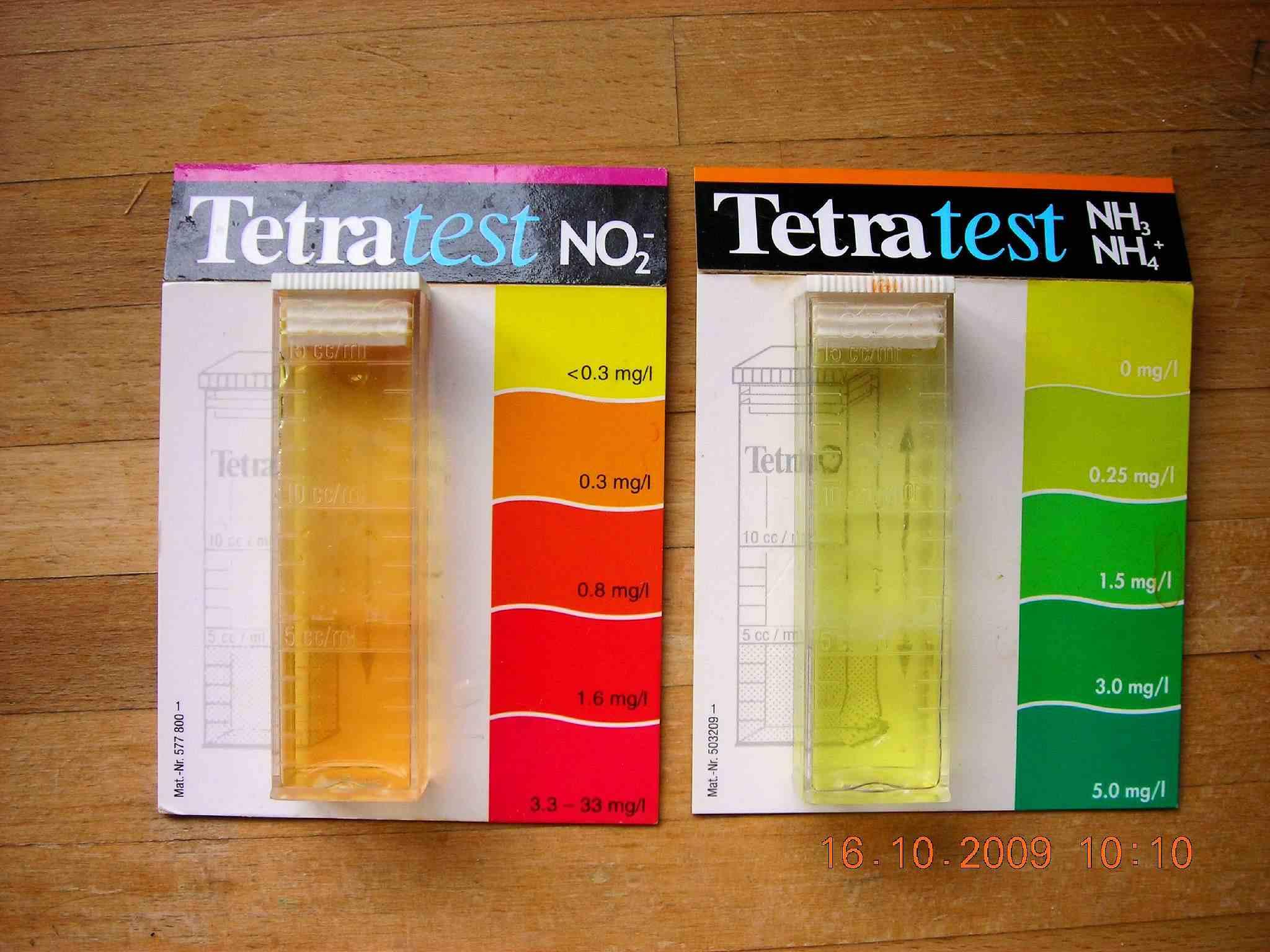 Ammonia & Nitrite Tests