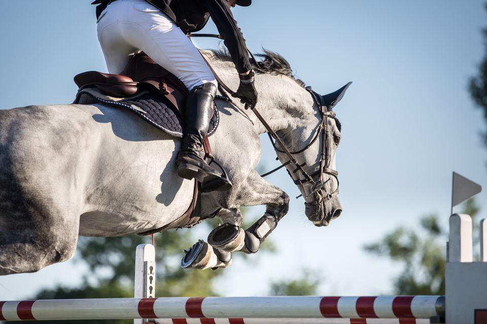 Jinete a caballo realizando salto de estadio