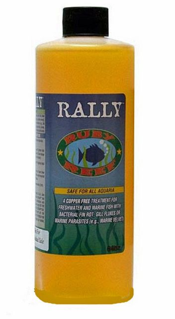 Ruby Reef Rally