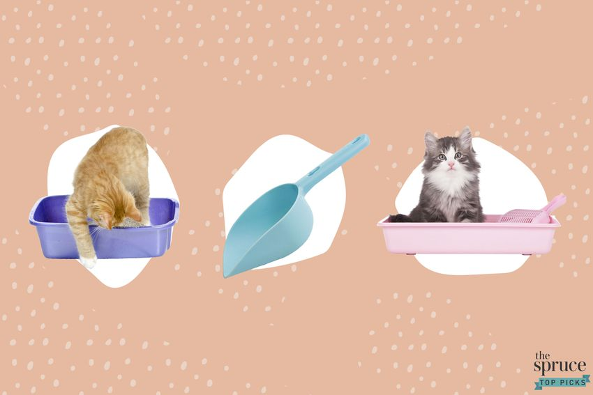 Photo composite of cats in a litter box and a litter box scooper over a peach background.