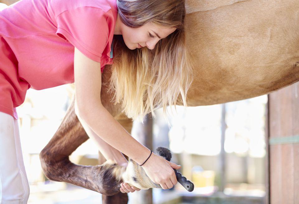 Adolescente, limpieza de pezuña de un caballo