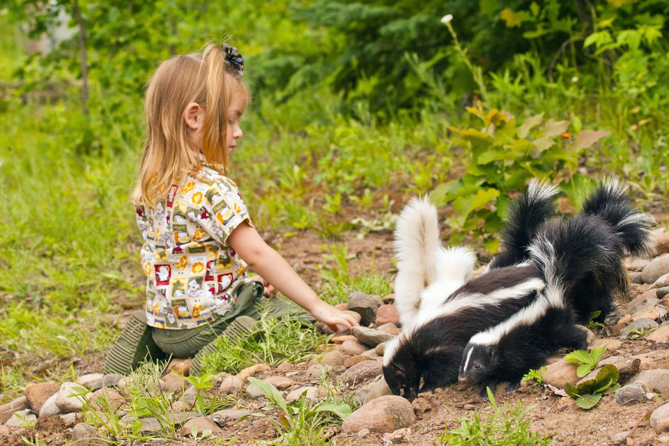 Girl outside with baby skunks