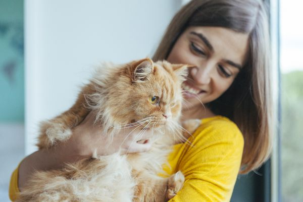 owner with cat