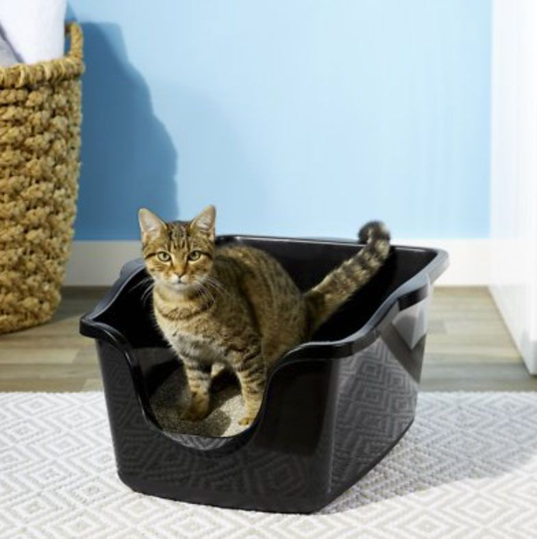 High Sided Cat Litter Box