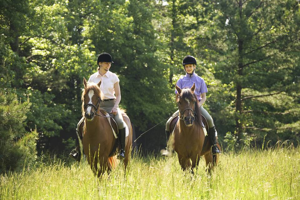 Two riders on horseback in a field