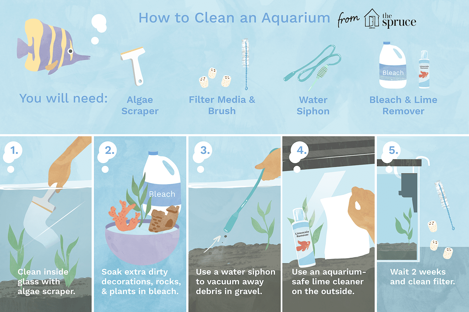 How to Clean a Dirty Fish Tank the Right Way