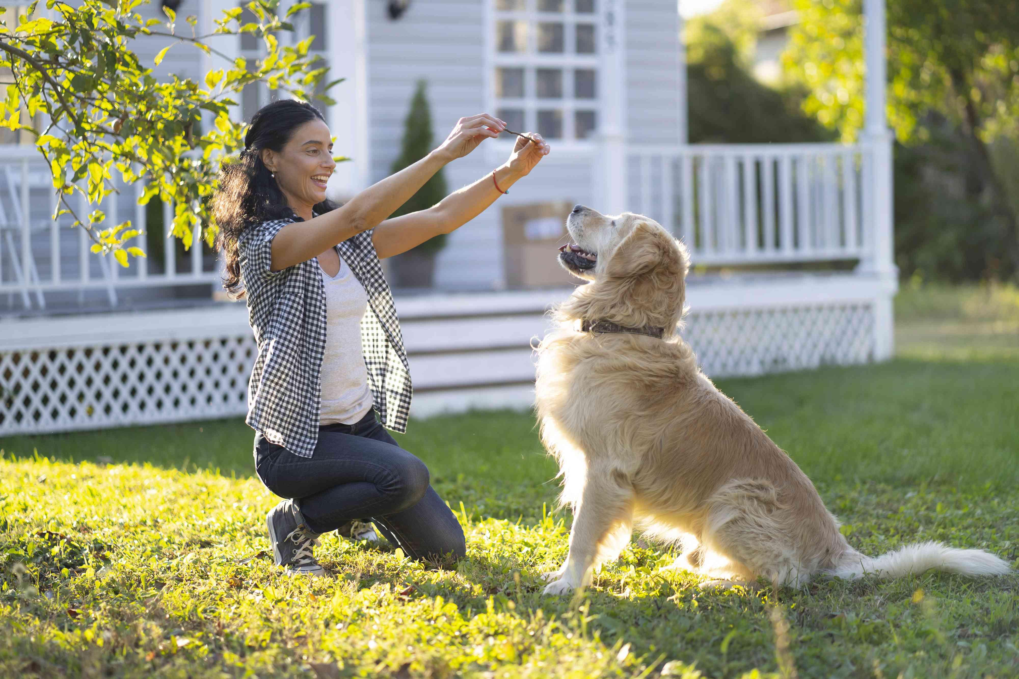 Woman training a dog in back yard