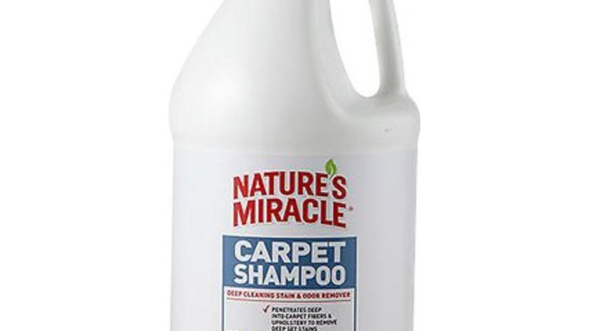 Easy Carpet Cleaner Tips