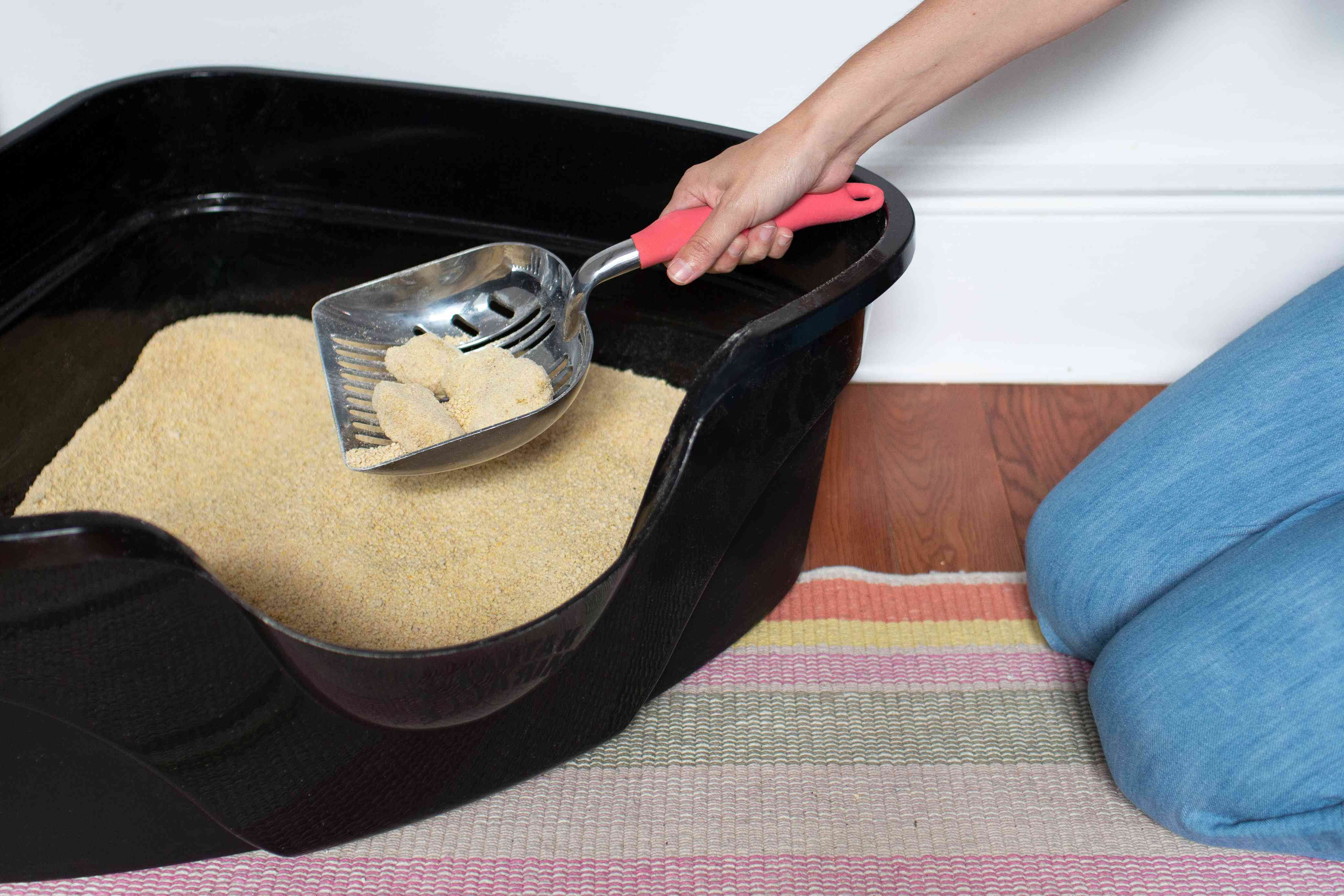 person scooping a litter box