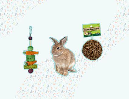 Top Rabbit Toys