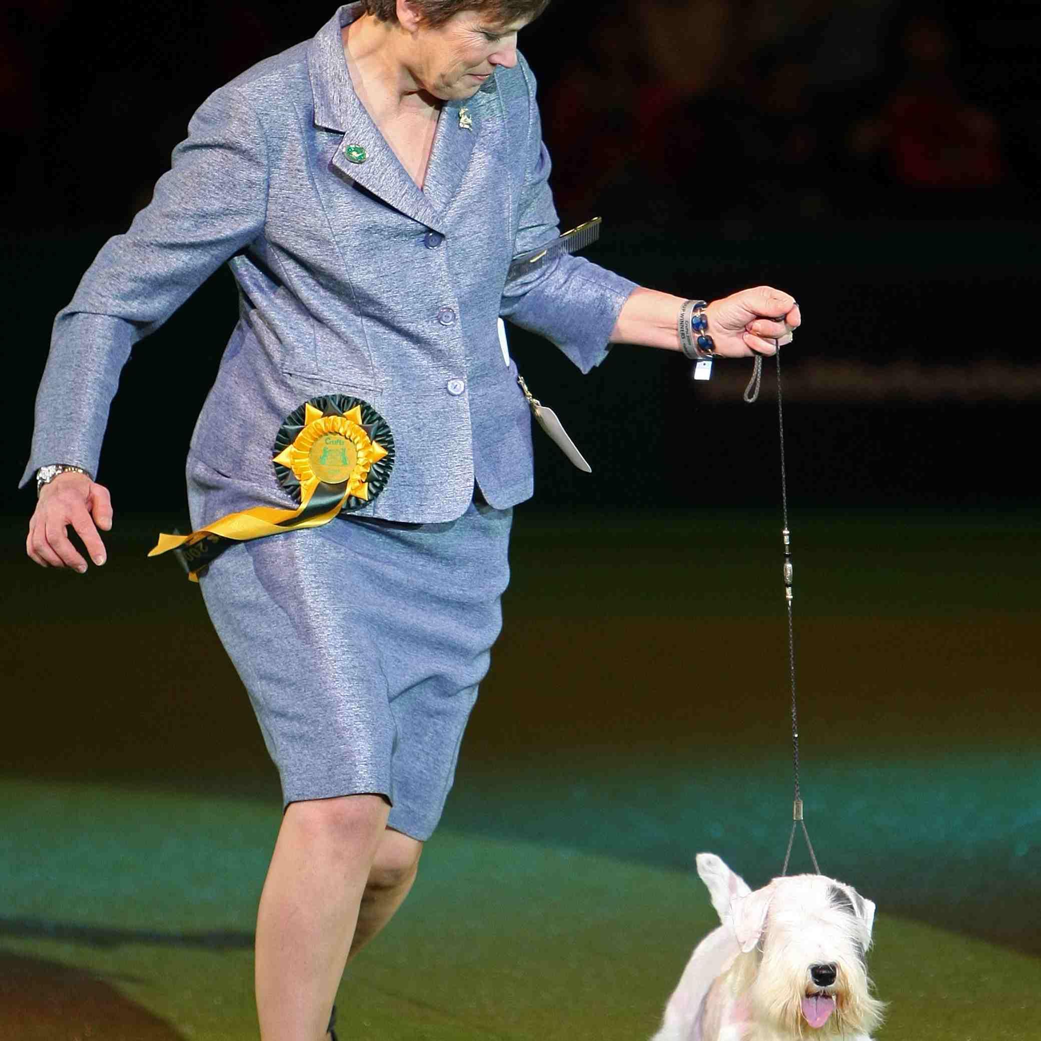 A dog show handler