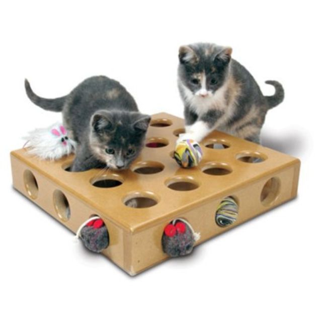 The 8 Best Cat Toys of 2019