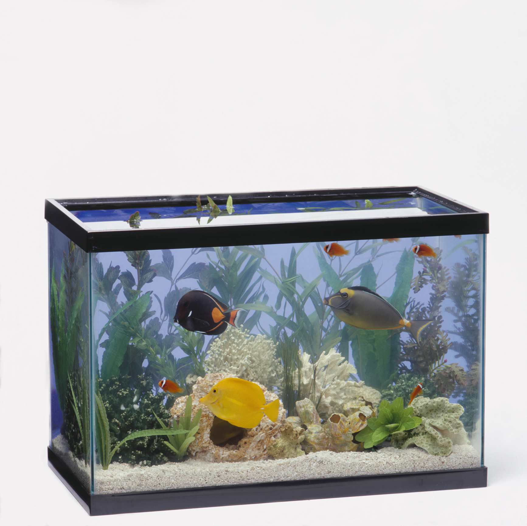 Fish & Aquariums Fish Tank And Stand Cool In Summer And Warm In Winter Pet Supplies