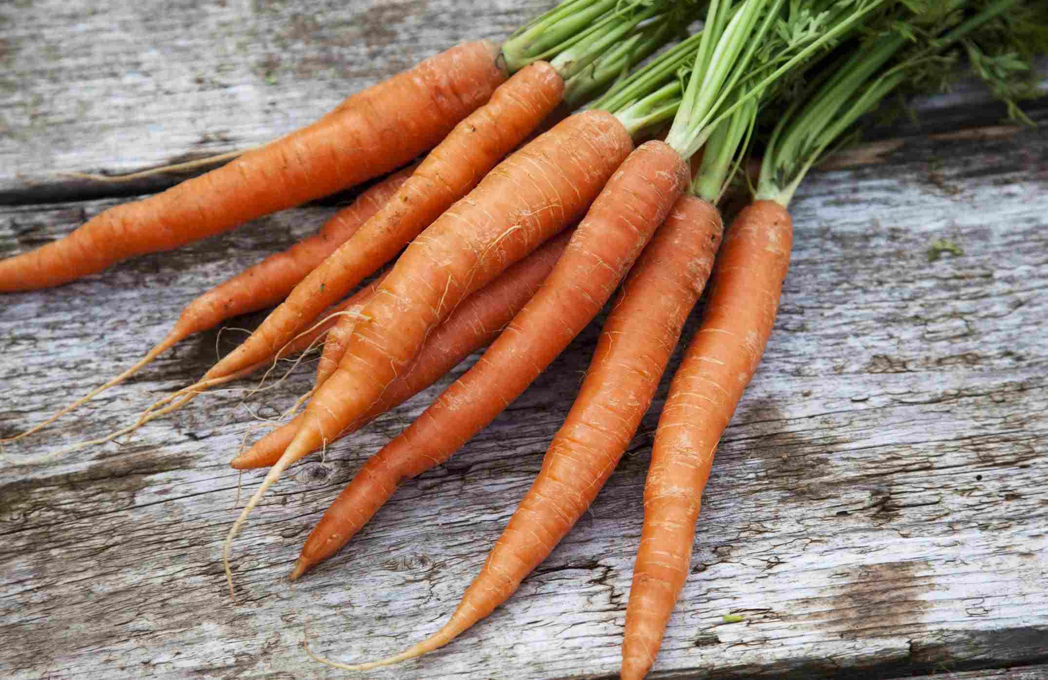A bundle of fresh carrots