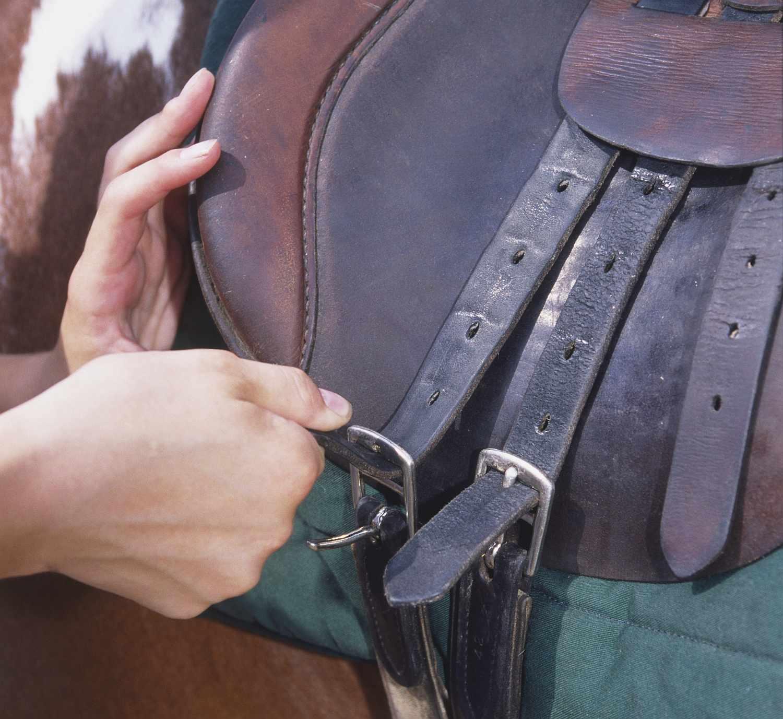 Hands doing up saddle girth.