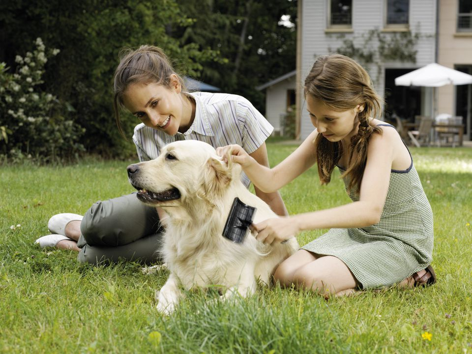 Mother and daughter brushing dog