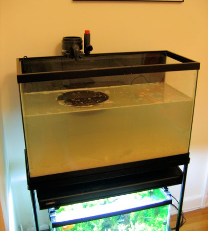 how to clean aquarium glass white residue