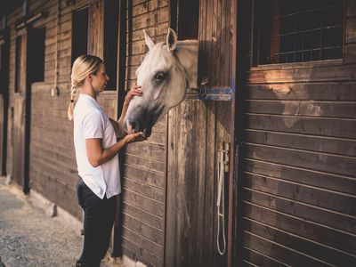 Determining What It May Cost to Board Your Horse