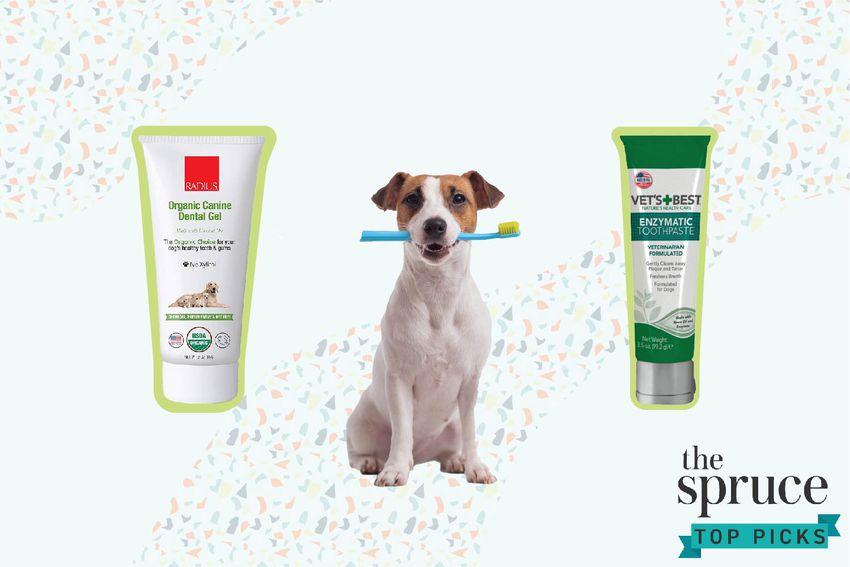 Dog Toothpastes