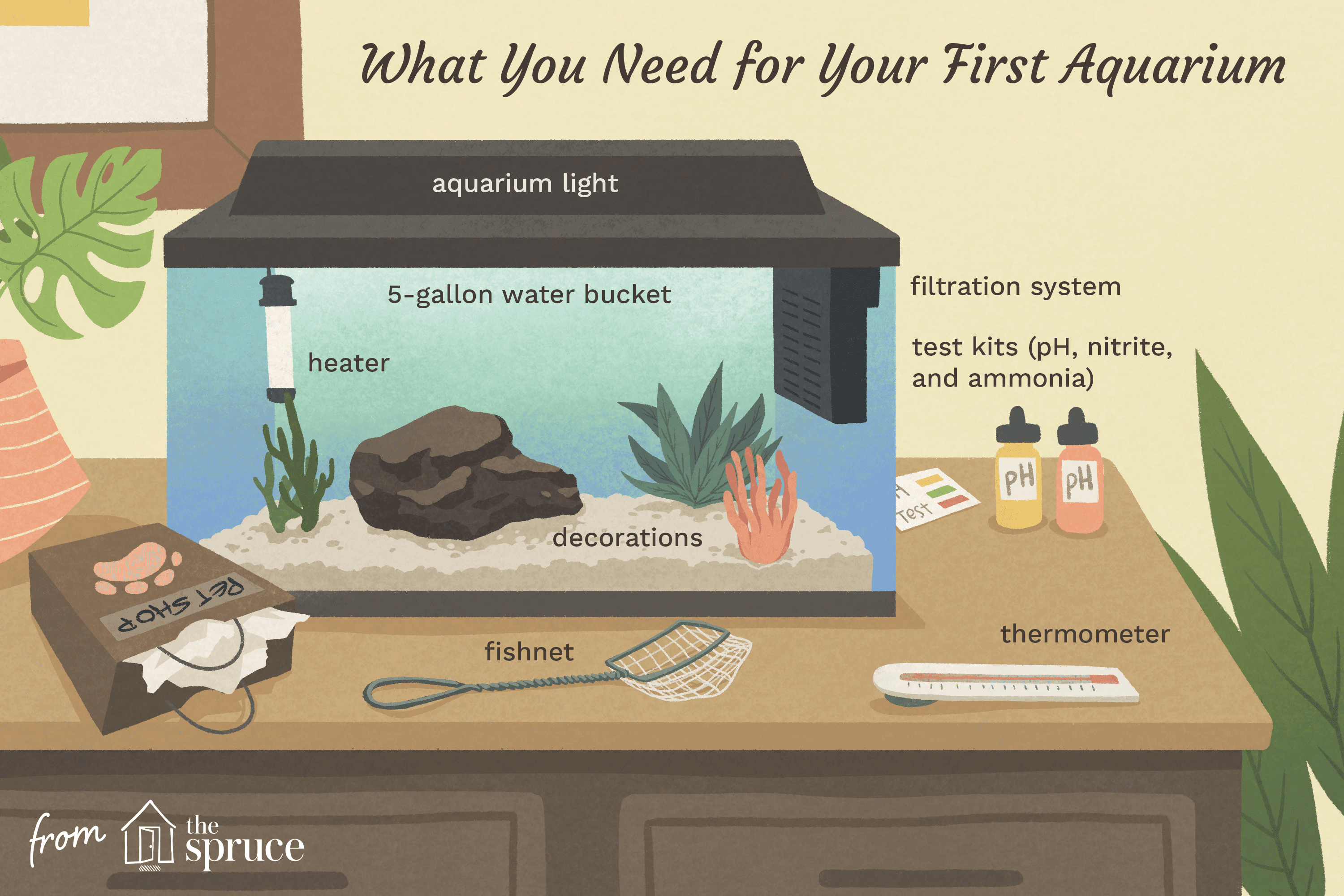 what you need for your first aquarium illustration