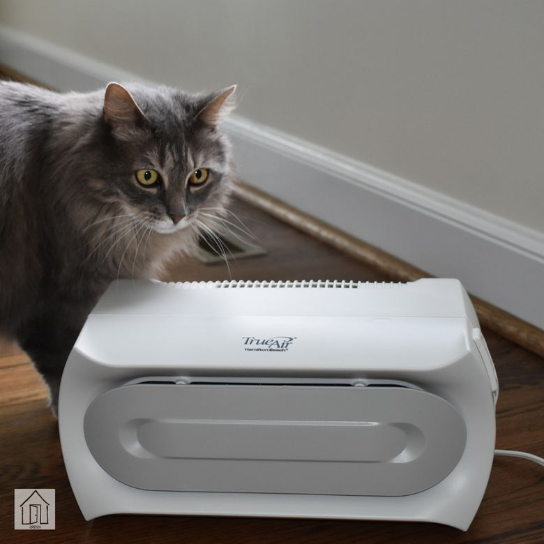 Hamilton Beach TrueAir Compact Pet Air Purifier