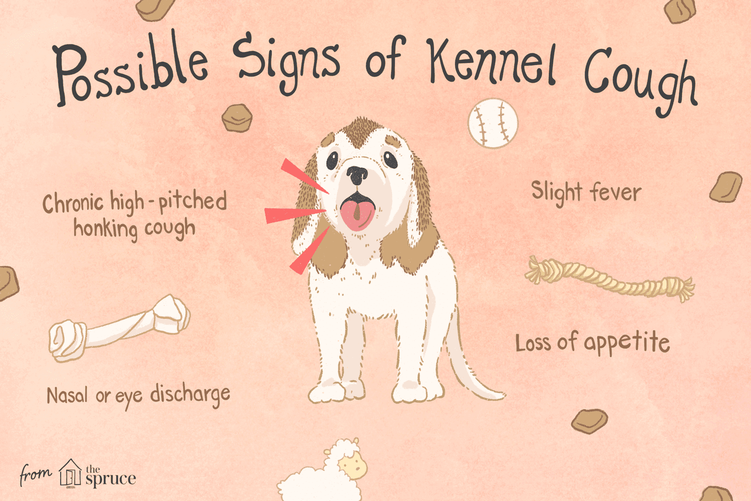 Kennel cough in dogs illustration